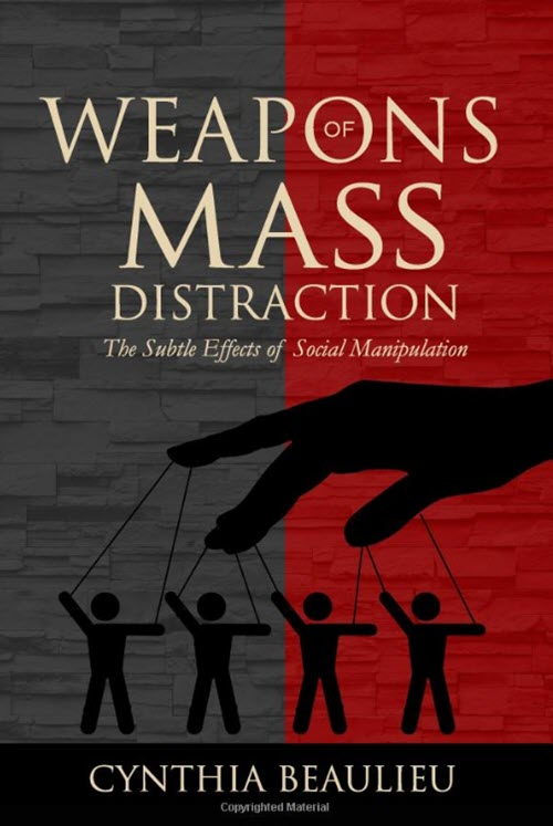weapons of mass distraction book cover cindy beaulieu