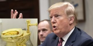 donald trump golden toilet
